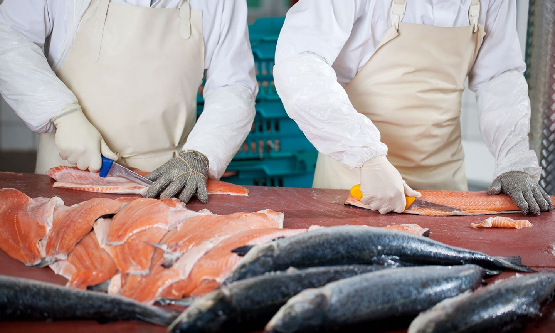 Passerelle vers la qualification aux Métiers de la cuisine et de la poissonnerie