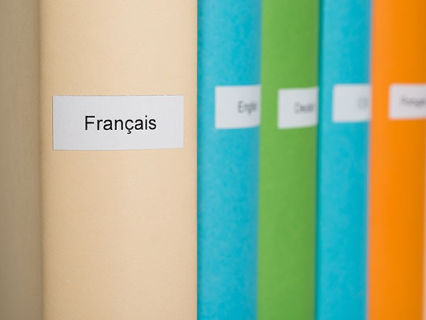 Formation linguistique